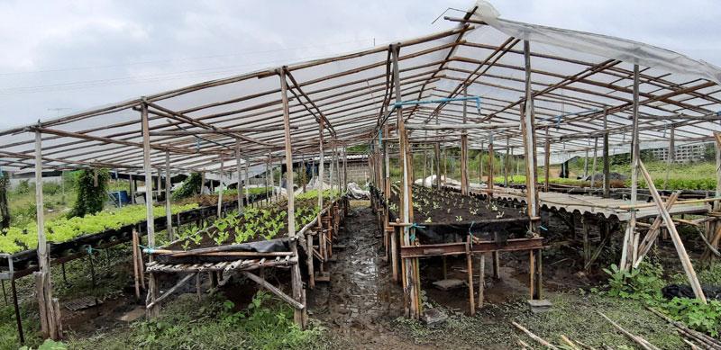 เกษตรไบโอ (Bio)